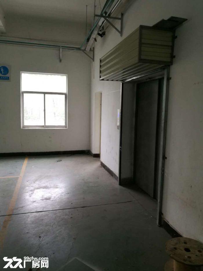 沌口经济开发区一层1073平和1750平两间带行吊厂房招租-图(3)