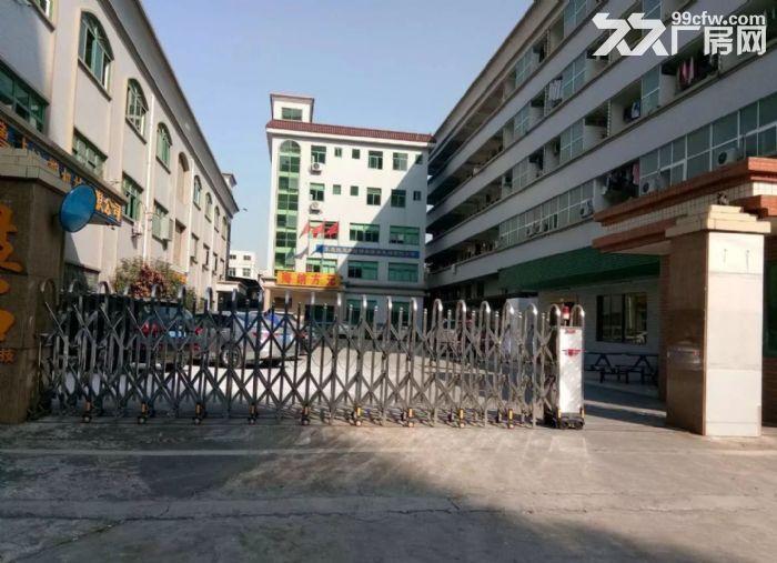 寮步新出一楼厂房800平米带豪华装修招租-图(1)