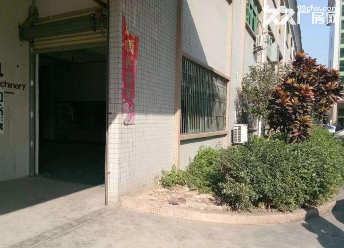 寮步新出一楼厂房800平米带豪华装修招租-图(3)