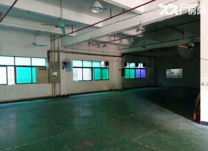 寮步新出一楼厂房800平米带豪华装修招租-图(6)