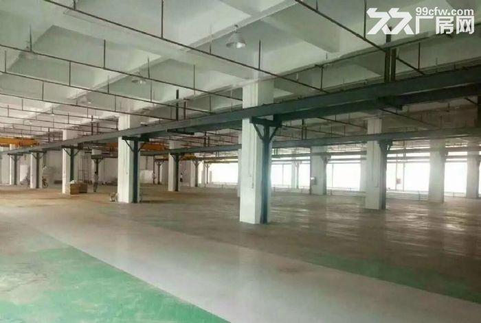 东城九成新标准一楼厂房1000平米带水电装修出租-图(2)