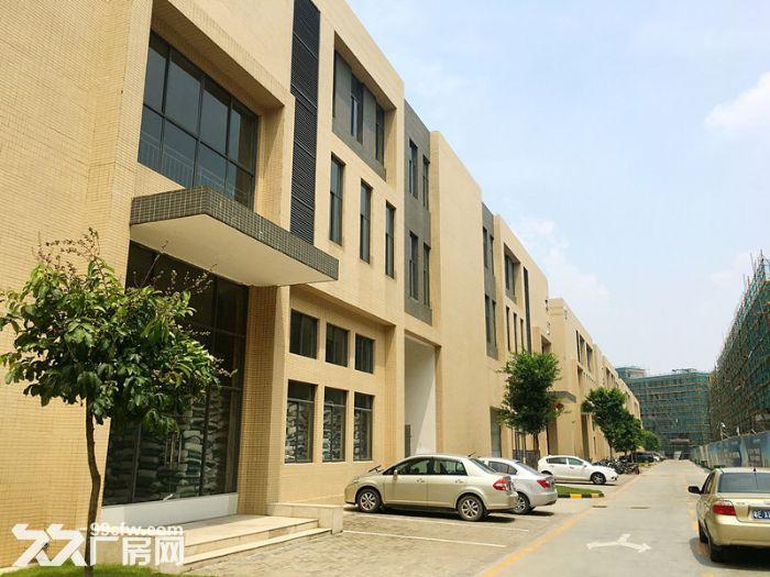 出售全新标准化独栋厂房1千−9千平方,50年产权两证全-图(5)
