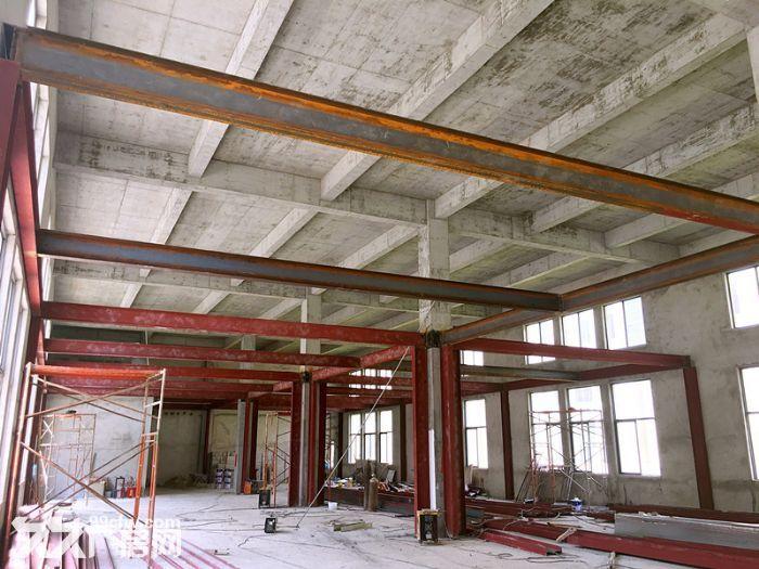 出售全新标准化独栋厂房1千−9千平方,50年产权两证全-图(7)