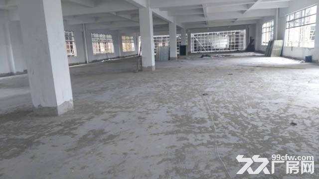 东莞市企石镇高新科技园13000平方厂房出租包租-图(3)