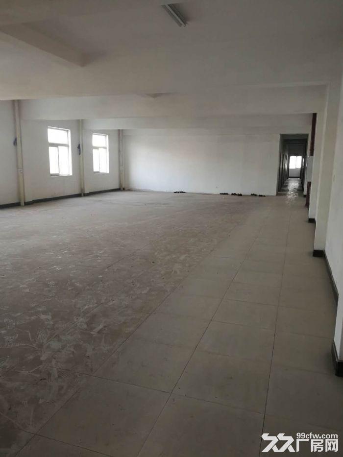 长江工业园总9500m2厂房出租(适合美的配套)-图(2)