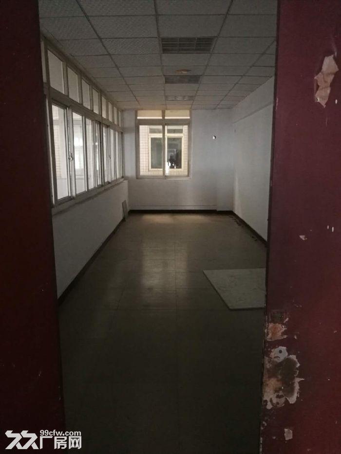 长江工业园总9500m2厂房出租(适合美的配套)-图(7)