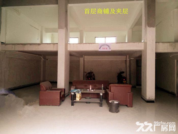 从化区人和墟省道边一栋五层920平方楼房商铺转让-图(3)