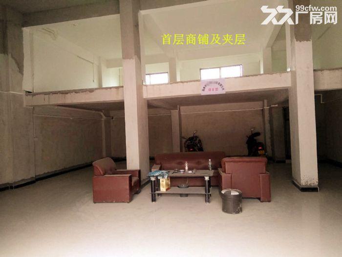 从化区人和墟省道边一栋五层920平方楼房商铺转让-图(4)