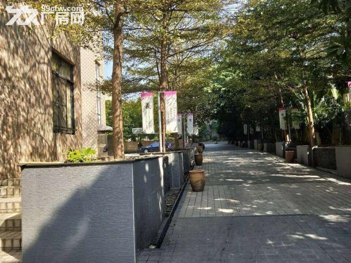 园林式,豪华装修,配套齐全,石楼高标准1万方出租-图(1)