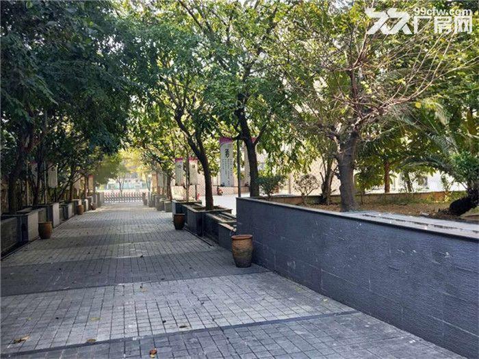 园林式,豪华装修,配套齐全,石楼高标准1万方出租-图(2)