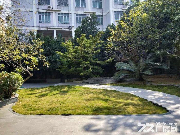 园林式,豪华装修,配套齐全,石楼高标准1万方出租-图(3)