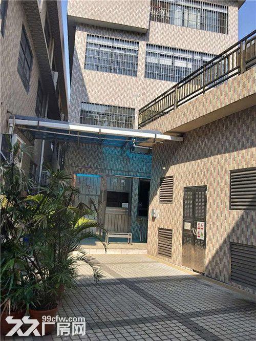 园林式,豪华装修,配套齐全,石楼高标准1万方出租-图(7)