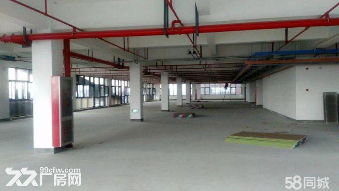 厂房出租层高7.2大小面积都有500起租-图(4)