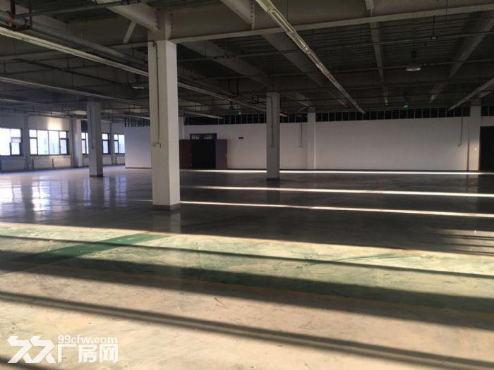 亦庄东区生产研发仓储用房1515平-图(4)