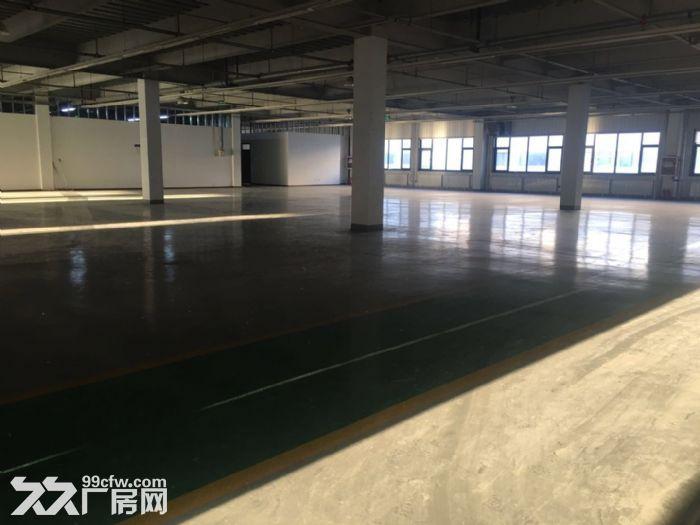 亦庄东区生产研发仓储用房1515平-图(5)