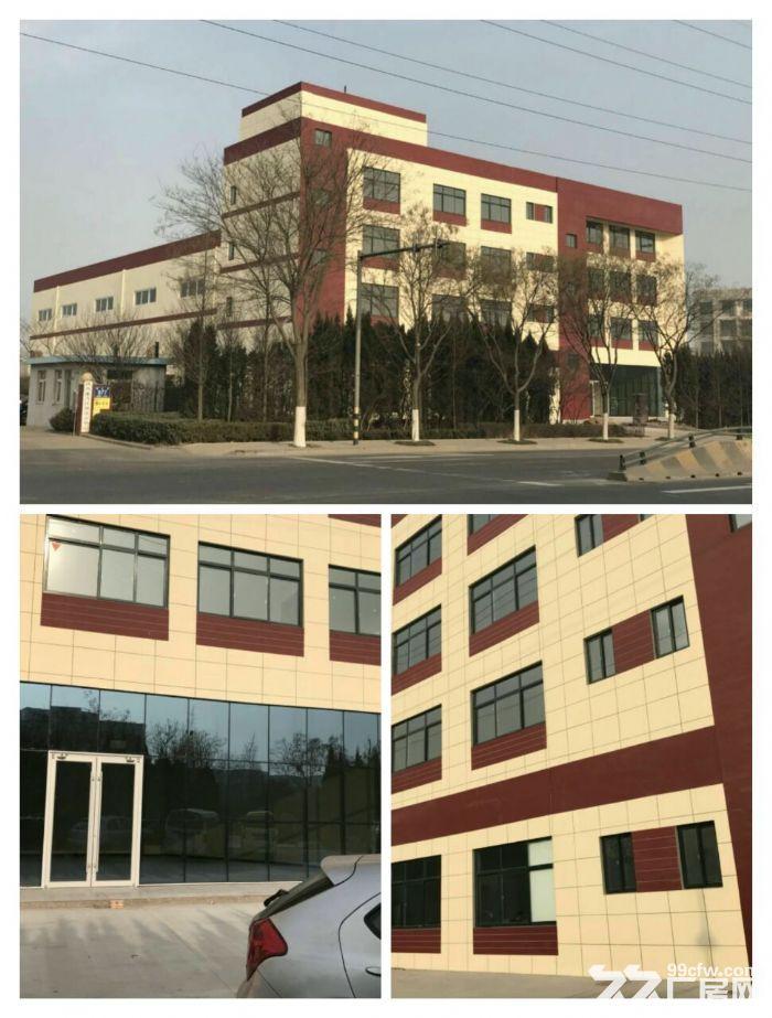 黄岛区茂山路全新厂房出租-图(1)