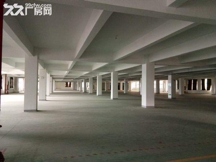 国道旁50米标准厂房18000平出租可分租租金10元起-图(1)