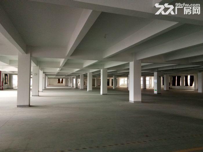 国道旁50米标准厂房18000平出租可分租租金10元起-图(3)