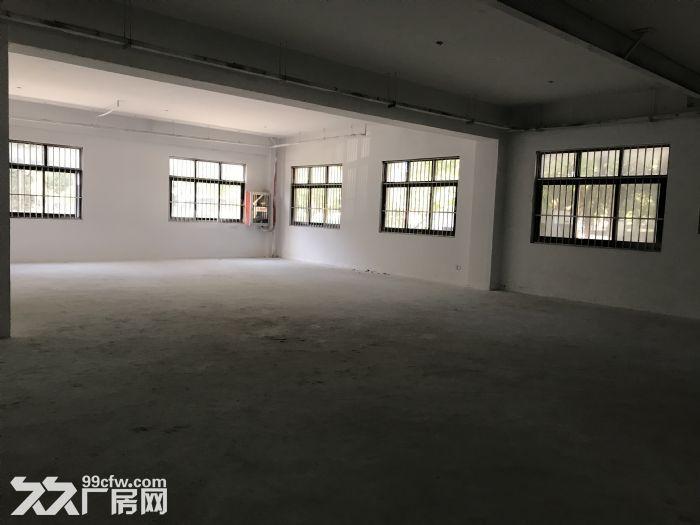 出租新区旺庄长江路1100平优质单层厂房-图(3)