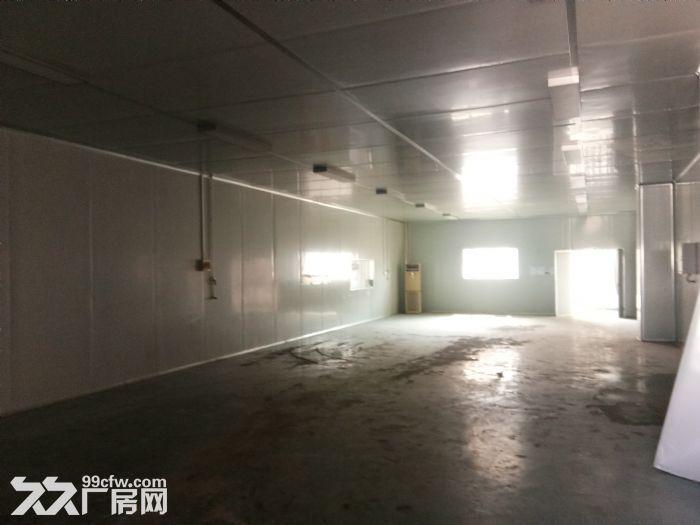 火炬一期标准钢构厂房400平出租-图(2)