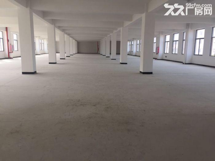 全新厂房7500平出租整租不分租-图(2)