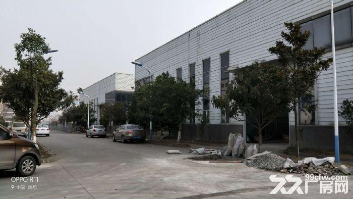 双流西航港工业园1100平钢构厂房带环评带办公住宿-图(1)