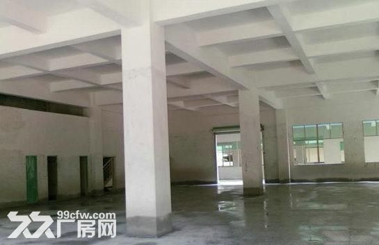 东莞市麻涌劲爆厂房5000平方1栋3层出租-图(2)