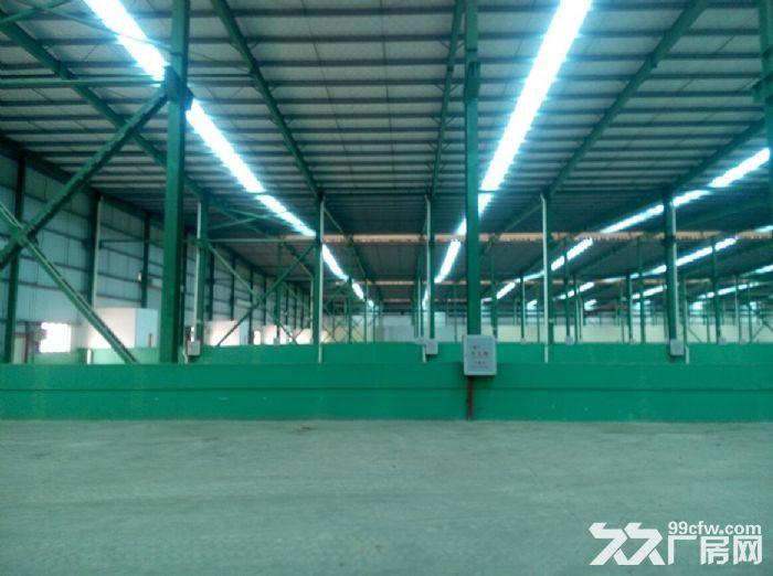 同安独门独院一万平可分5000平钢结构厂房出租-图(1)