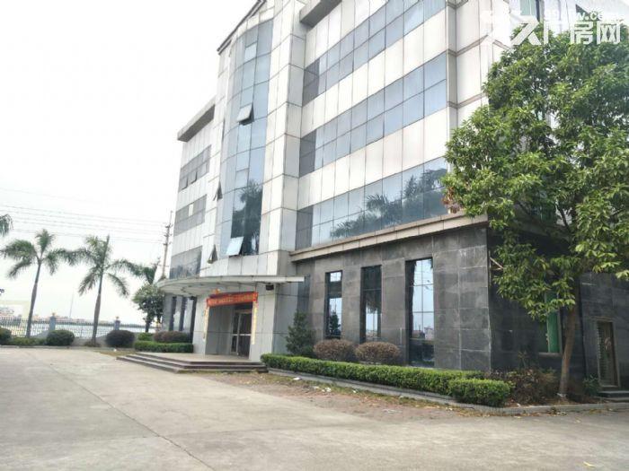 靓镜湖大道新雅产业园2000和3000平米可办环评-图(4)