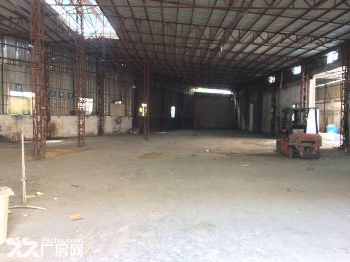 清溪镇三中8米高单一层钢构厂房便宜出租1400平-图(1)