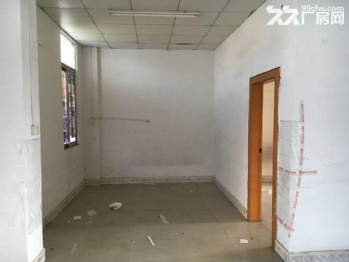 清溪镇三中8米高单一层钢构厂房便宜出租1400平-图(3)