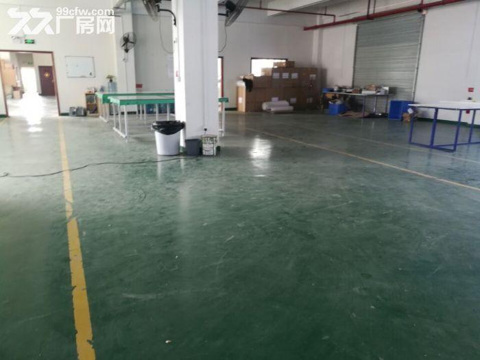 凤岗天堂围楼上工业厂房出租1060平方,近深圳观澜-图(3)