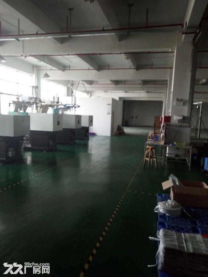 清溪谢坑大型正规工业园内带装修厂房出租700平-图(2)