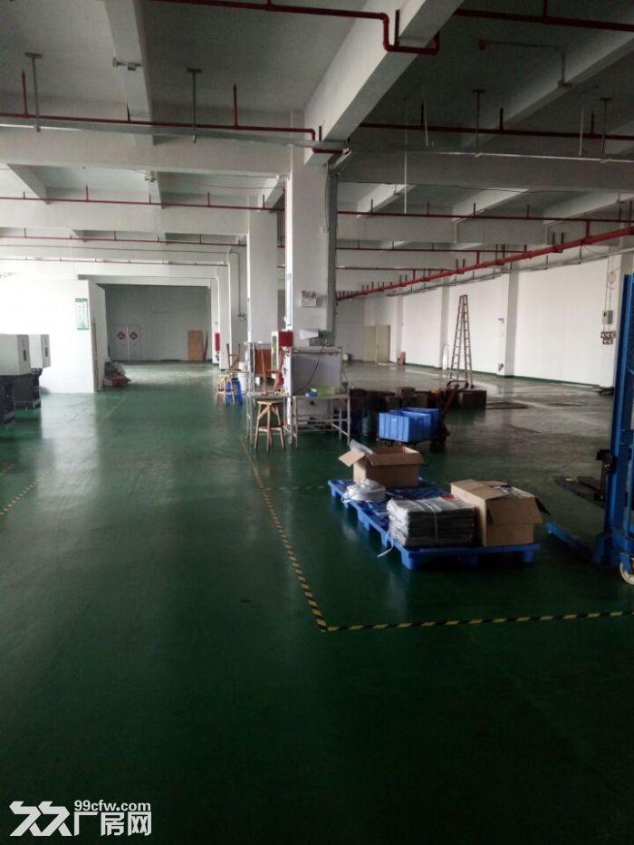 清溪谢坑大型正规工业园内带装修厂房出租700平-图(3)