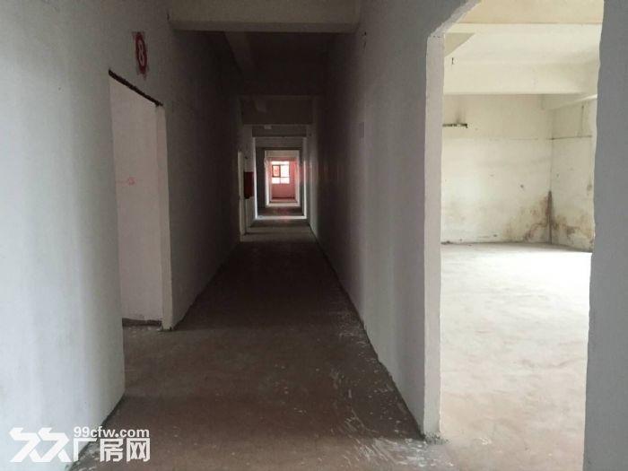 凤岗官井头楼上工业厂房出租950平方,靠近龙凤山庄-图(3)