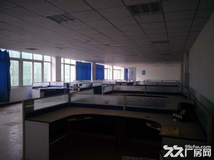 茶园长江工业园8000平米带独立院坝厂房、仓库出租,可分租-图(2)