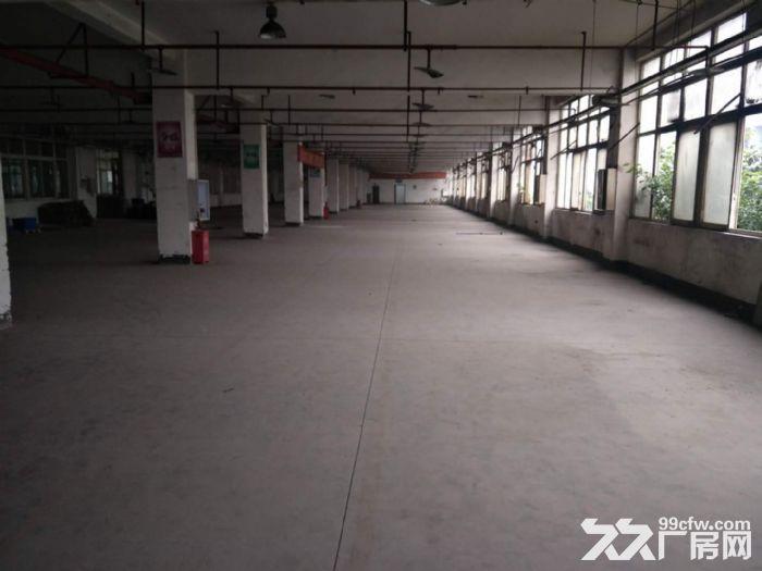 茶园长江工业园8000平米带独立院坝厂房、仓库出租,可分租-图(4)