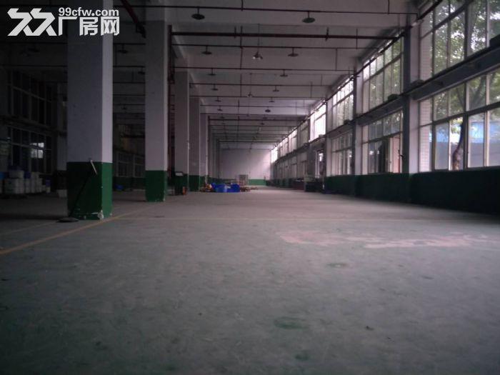 茶园长江工业园8000平米带独立院坝厂房、仓库出租,可分租-图(5)