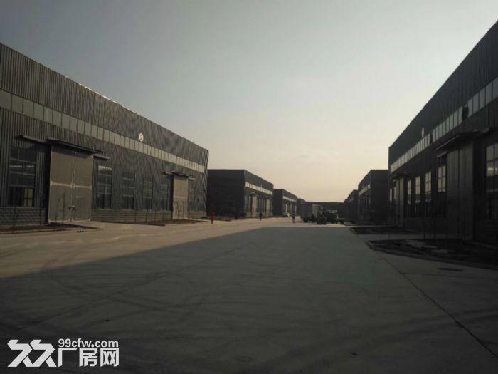 沧州经济技术开发区仓库厂房出租-图(3)