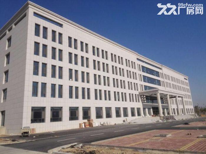 沧州经济技术开发区仓库厂房出租-图(4)