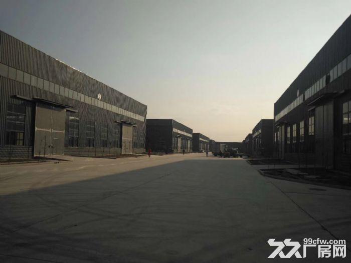 沧州经济技术开发区厂房仓库出租-图(3)