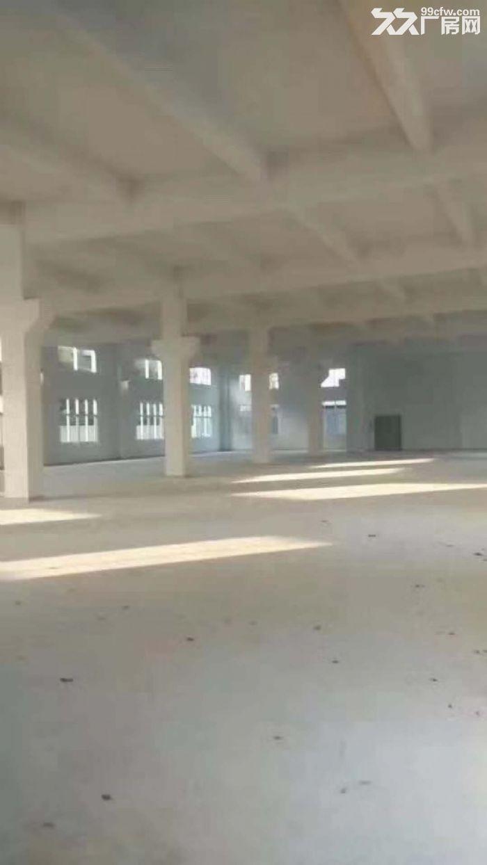 近深圳厂房2层带牛角3680平方合同期长-图(4)