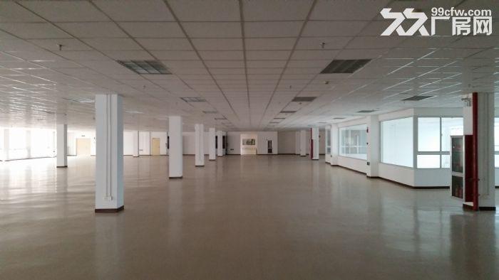 苏州新区3000平、6400平两幢标准厂房出租-图(1)