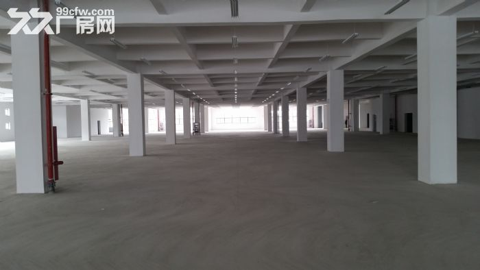 苏州新区3000平、6400平两幢标准厂房出租-图(2)