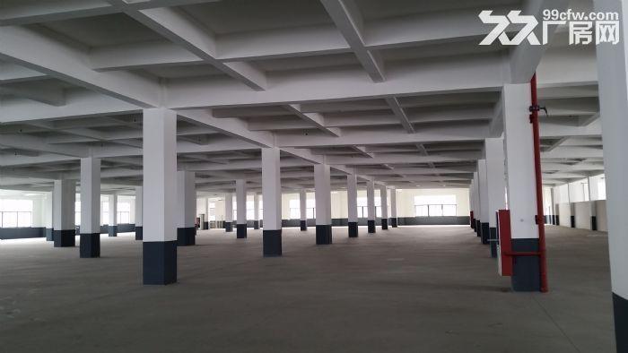 苏州新区3000平、6400平两幢标准厂房出租-图(3)