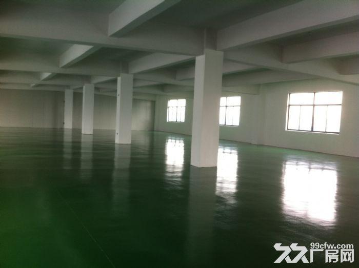 苏州新区3000平、6400平两幢标准厂房出租-图(4)