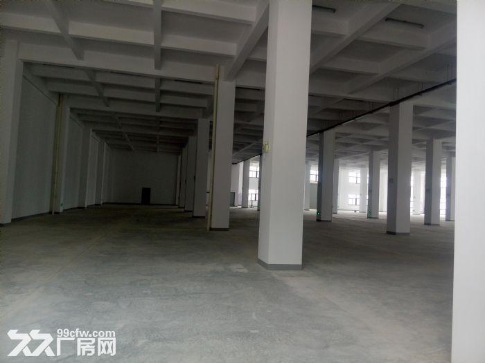 同安一二楼共4800平厂房出租-图(1)