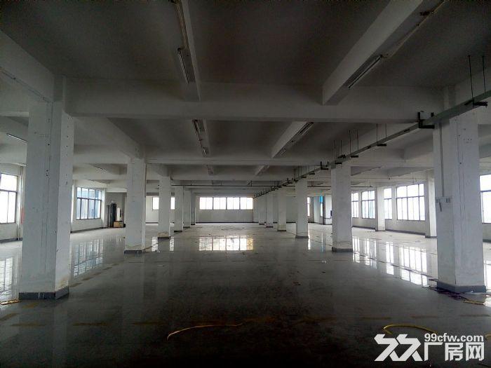 同安集中区一二楼各2000平厂房出租-图(1)