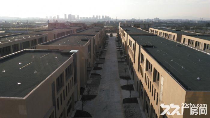 (出售)(非中介)全新独栋、双拼厂房,50年产权,可按揭-图(3)
