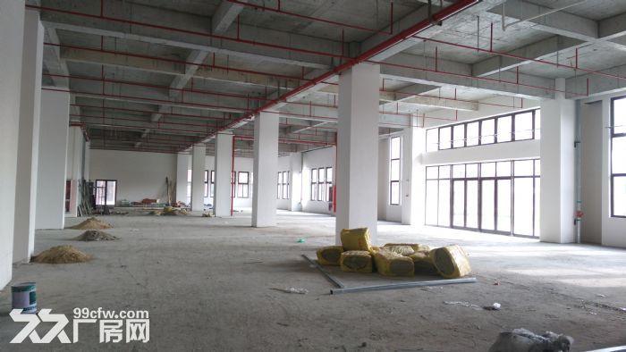 浦江新园区可环评层高7米适研发办公仓储等行业-图(2)